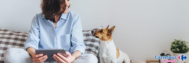 Carrefour assurance santé animale
