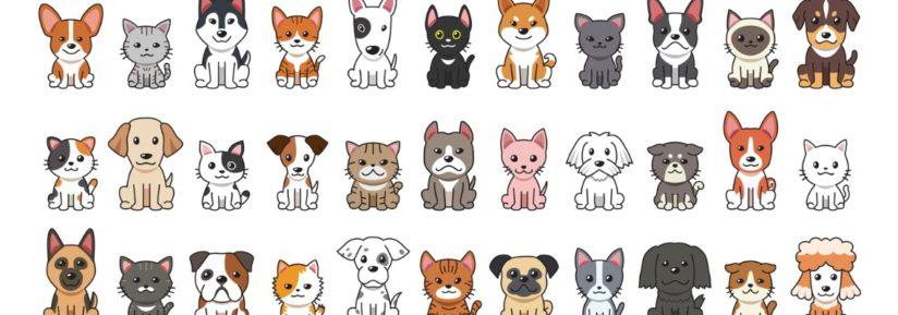 assurance chien selon race