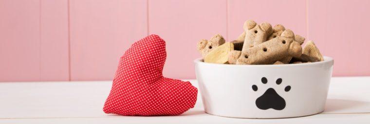 biscuits pour chien faits maison