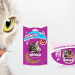 friandise whiskas pour chat