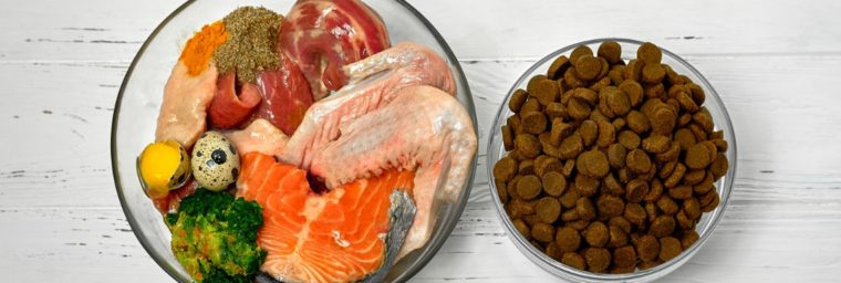 préparer alimentation fraîche chien
