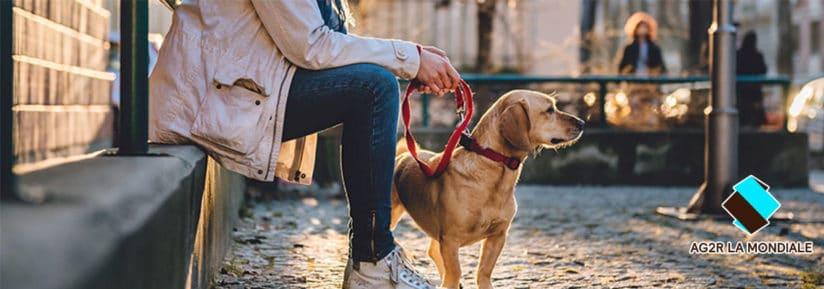 AG2R La mondiale assurance animaux