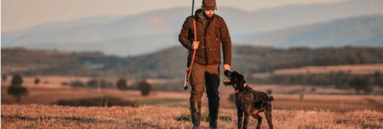 assurance chien de chasse pas chère