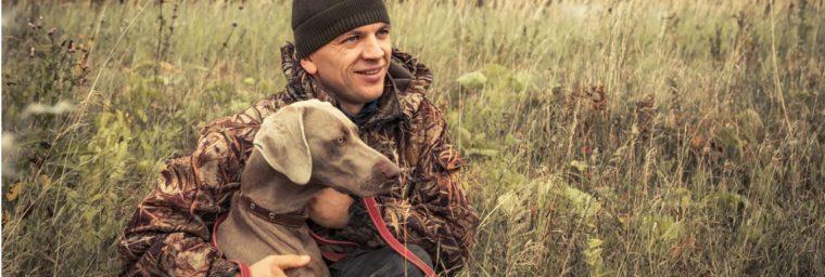 assurance santé chien de chasse aux sangliers