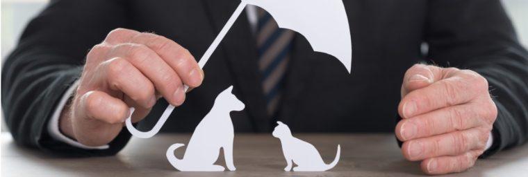 avantages mutuelle animaux