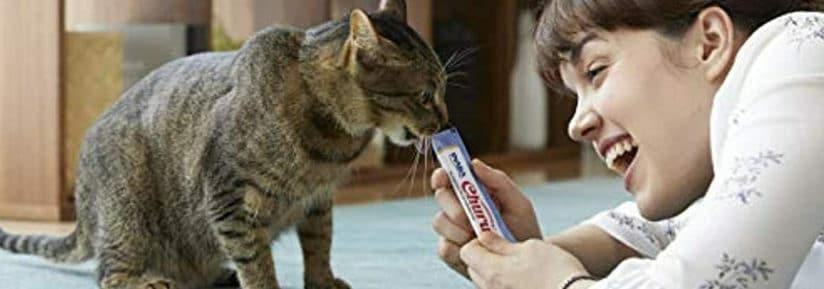 friandise liquide pour chat_