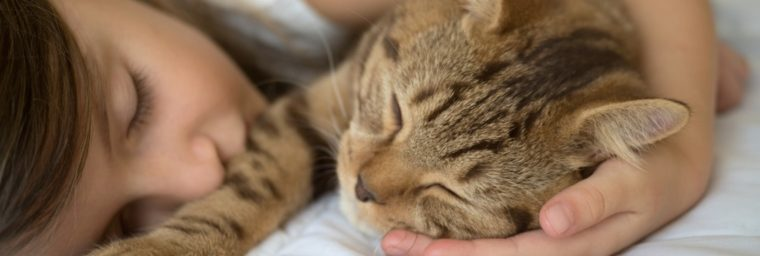 prix garderie chat