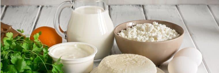 Alimentation à base de lait