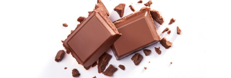 chocolat interdit husky