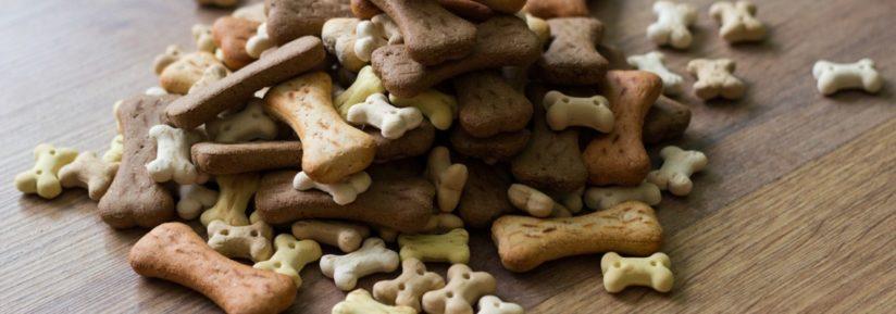 Friandise pour chien pas cher