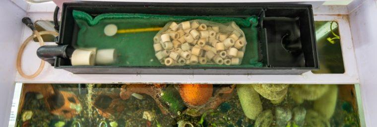 filtre pour aquarium