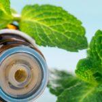 huile essentielle à la menthe poivree pour chat